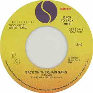 Pretenders - Back On The Chain Gang / My City Was Gone mp3 flac