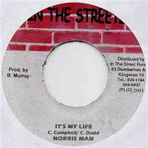 Norris Man - It's My Life mp3 flac