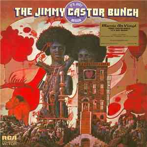 The Jimmy Castor Bunch - It's Just Begun mp3 flac