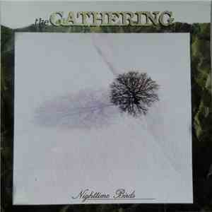 The Gathering - Nighttime Birds mp3 flac