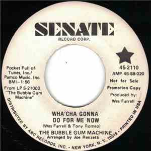 The Bubble Gum Machine - Wha'cha Gonna Do For Me Now mp3 flac