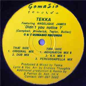 Tekka Featuring Angelique James - Didn't You Notice ? mp3 flac